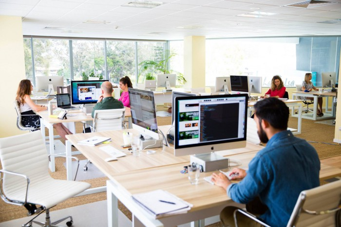 Impact of Office Design and Decor on Employee Productivity