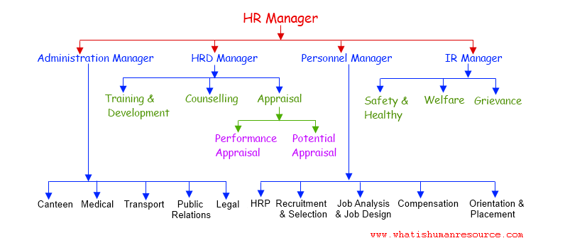 HR Manager vs. Administration Manager: What are Their Roles?